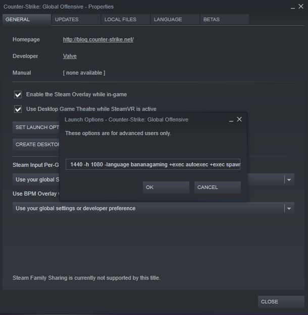 Keep your launch options simple for more FPS